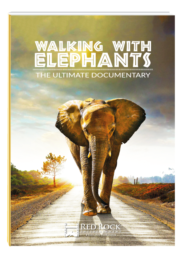 Walking With Elephants : Documentary Project